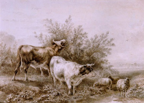 jan-bedijs-tom-koeien-en-schapen